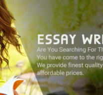 UK Essay Writing Services for the School and College Students